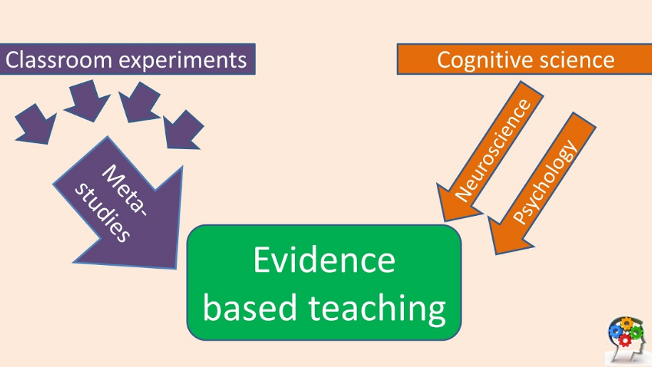 A diagram showing how evidence from classroom experiments and from the cognitive sciences feed in to evidence based teaching
